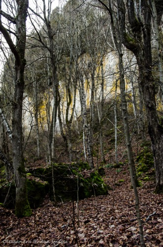 Mono Cliffs Provicial Park