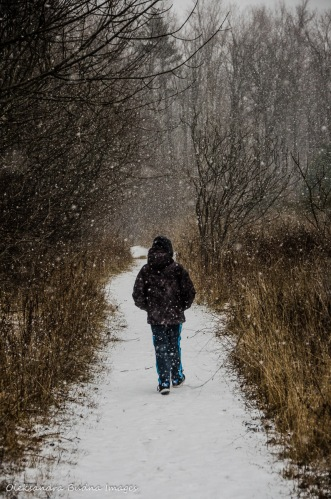 hiking in the snow at Mount Nemo in nHalton