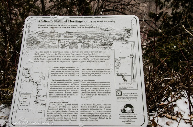 information panel at Mount Nemo