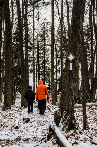 Bruce Trail at Mount Nemo Conservation Area