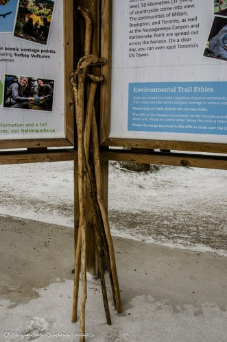 walking sticks by the information panel at Mount Nemo