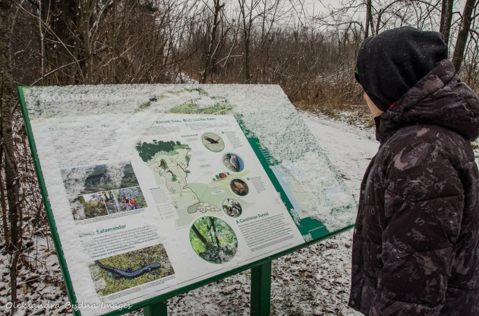 reading an information panel at Mount Nemo