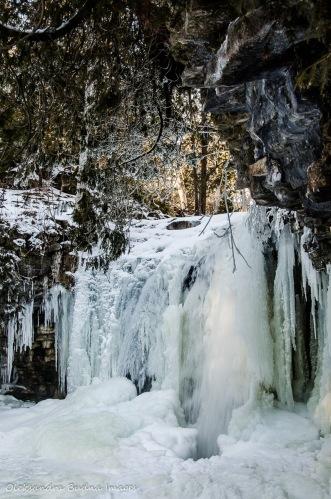 Hilton Falls in the winter