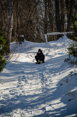 sledding in Killarney in the winter