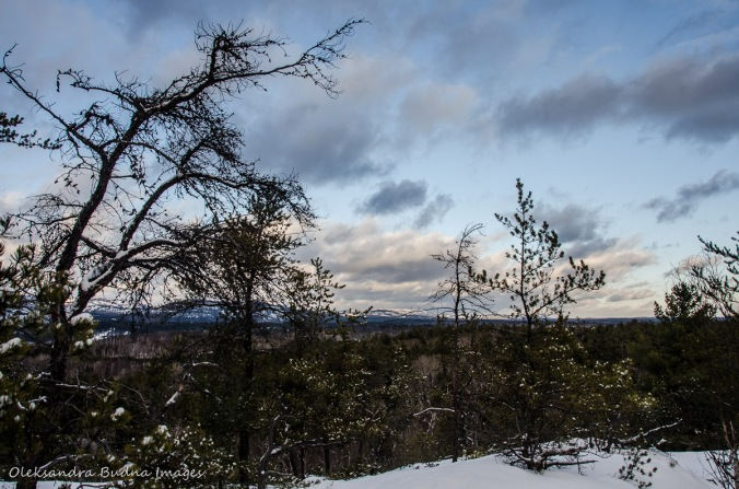 view from the Granite Ridge Trail in Killarney in the winter