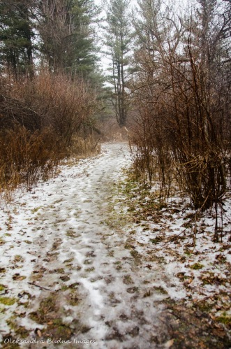 trail at Kortright Centre for Conservation