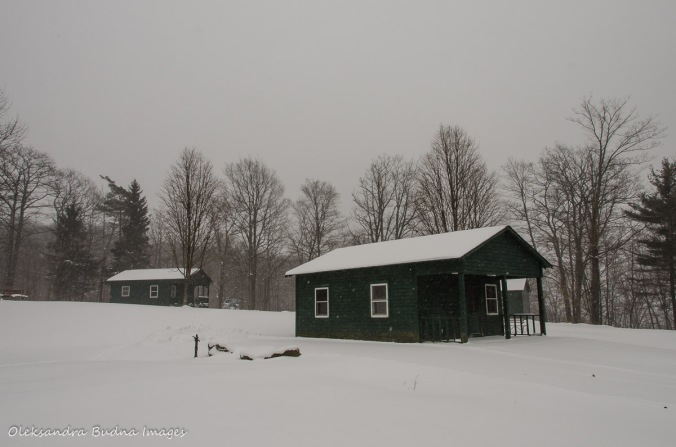 cabin at the Summit Loop in Allegany State Park
