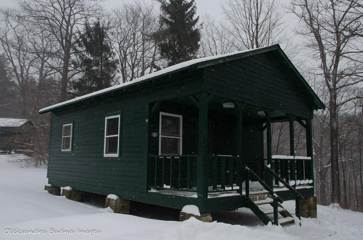 snow summit ddb california rentals destination rent in cabins cabin bear big for blog