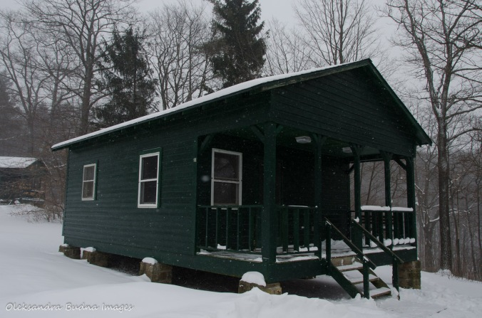 cabin 11 at summit Loop in Allegany State Park