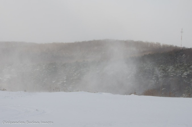 Winter at Allegany State Park
