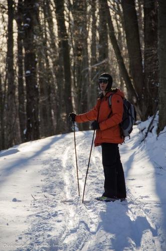 skiing in Allegany State Park