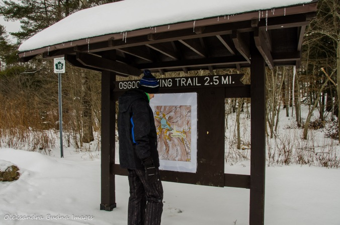 looking at Osgood Trail map in Allegany State Park
