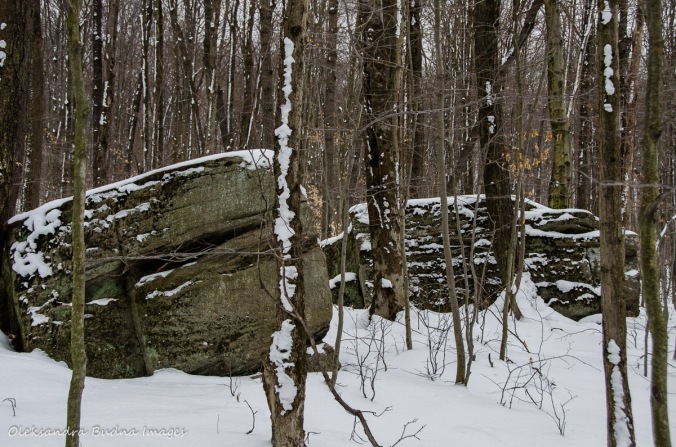 rocks at Allegany State Park