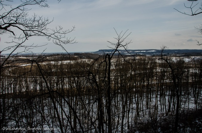 view of Mount Nemo from Crawford Lake Conservation Area