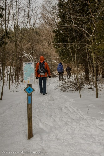 hiking at Crawford Lake Conservation Area