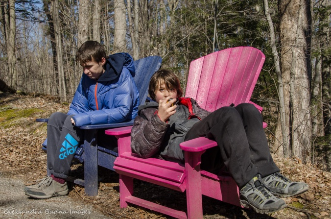 kids in muskoka chairs at Kortright Centre for Conservation