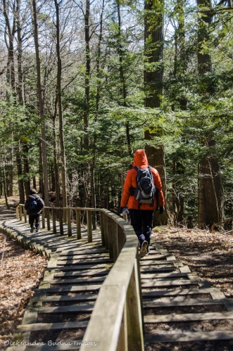 hiking at Kortright Centre for Conservation