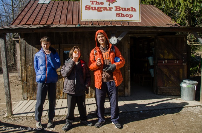 sugar bush shop at Kortright Centre for Conservation