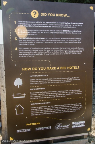 information panel about bee hotels at Kortright Centre for Conservation