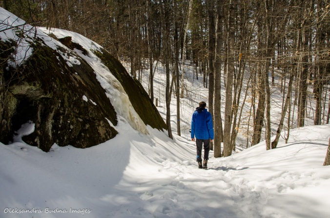 hiking Lookout trail in Algonquin in the winter