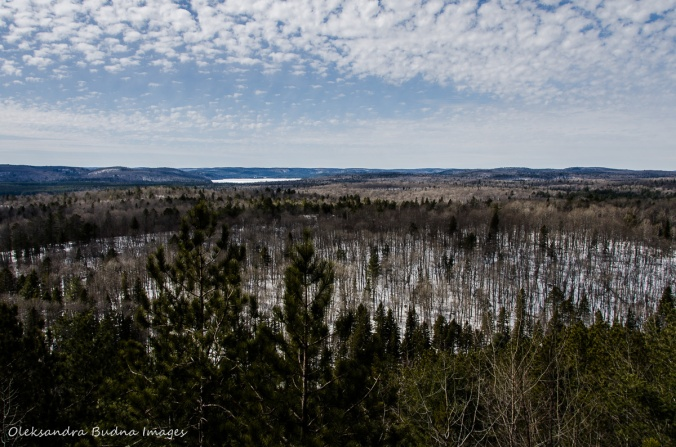 view fromLookout trail in Algonquin in the winter