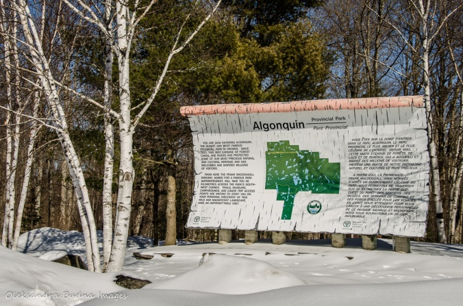 Algoquin Park sign at the entrance