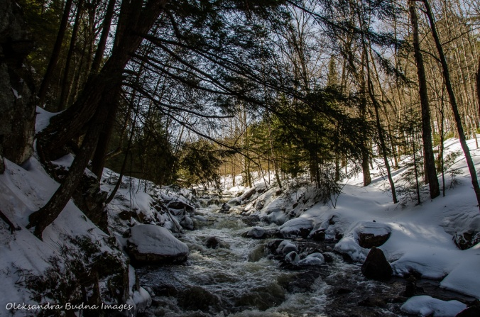 Madawaska River in Algonquin in the winter