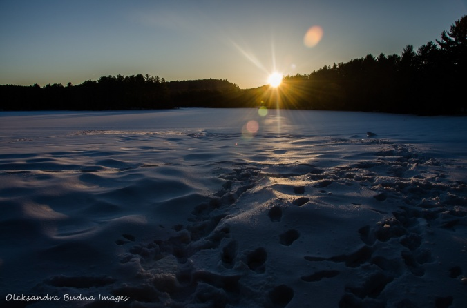 Mew Lake at Algonquin in the winter