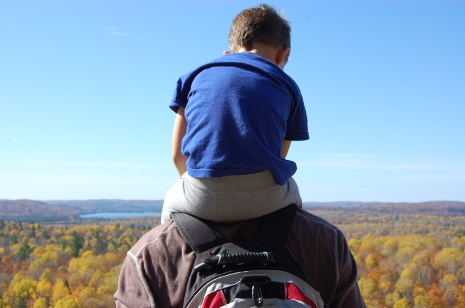 view from Lookout trail in Algonquin in the fall