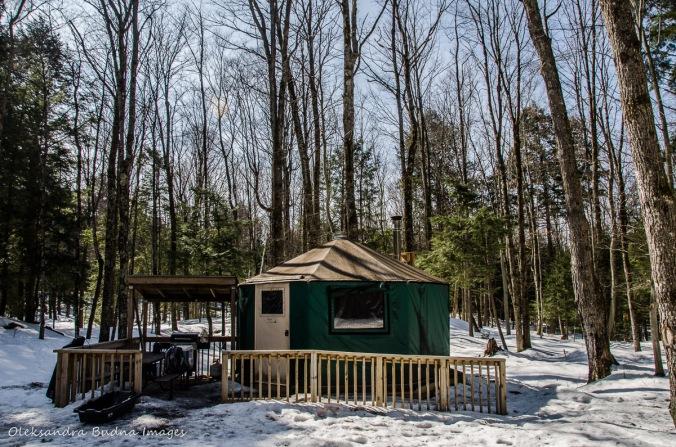 yurt 5 at Silent Lake