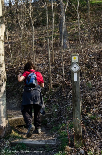 hiking at Dundas Valley Conservation Area