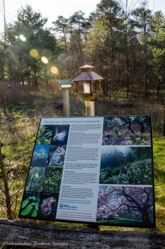 teaching garden at views from McCormack Trail at Dundas Valley Conservation Area