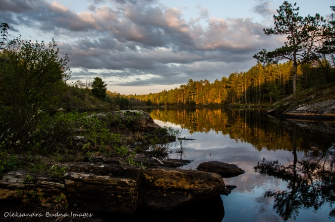 Sheldon Lake at sunset at Queen Elizabeth II Wildlands