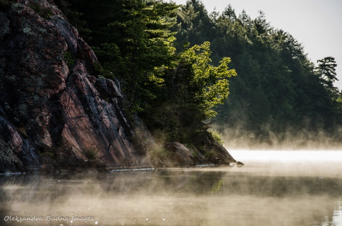 misty morning on Carlyle Lake in Killarney