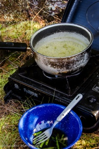 camping meal: asparagus risotto
