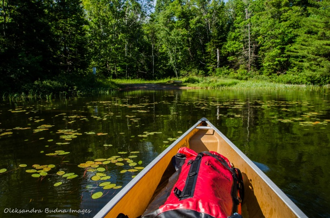 paddling towards Carlyle access point in Killarney