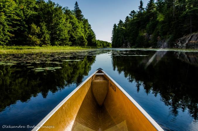 canoeing on Carlyle Lake in Killarney