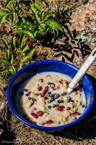 camping meals: oatmeal with fresh blueberries
