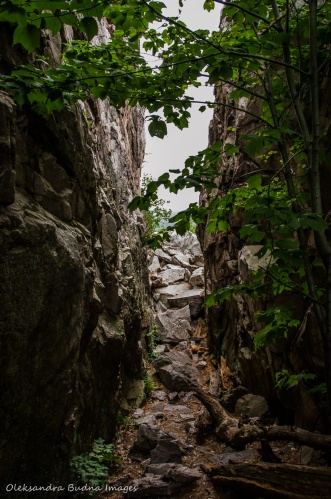 trail to the Crack in Killarney