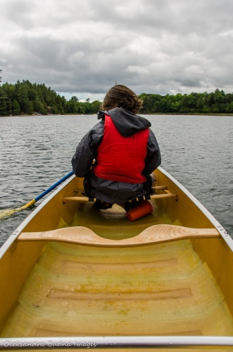 paddling on Boundary Lake in Killarney