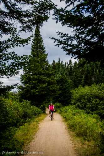 Old Railway bike trail in Algonquin