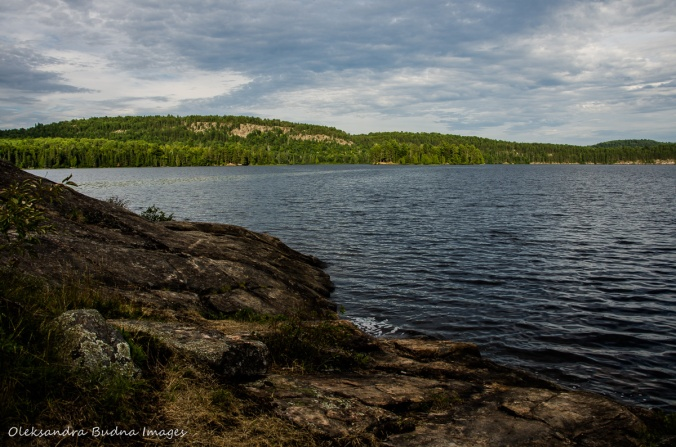Whitefish lake in Algonquin