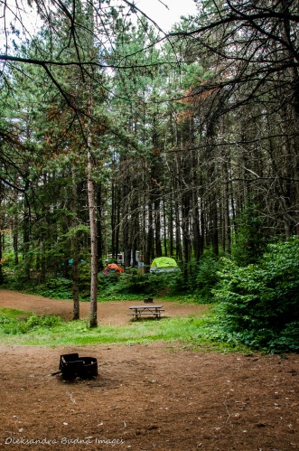 site 152 Kearney Campground Algonquin