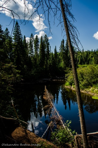 Oxtongue river in Algonquin