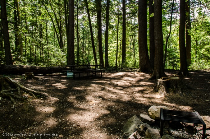 site 494 at Hardwood Hill Campground in Bon Echo