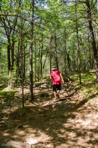 Cliff Top trail at Bon Echo