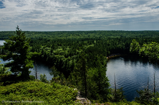 view from Cliff Top trail at Bon Echo