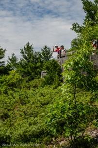 viewing platform at Cliff Top trail at Bon Echo
