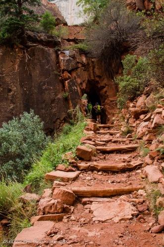 North Kaibab Trail at Grand Canyon