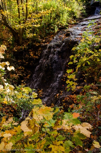Hermitage Cascade at Dundas Valley Conservation Area in the fall